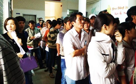 Quá tải cấp đổi giấy phép lái xe tại Khánh Hòa vì tin đồn thất thiệt