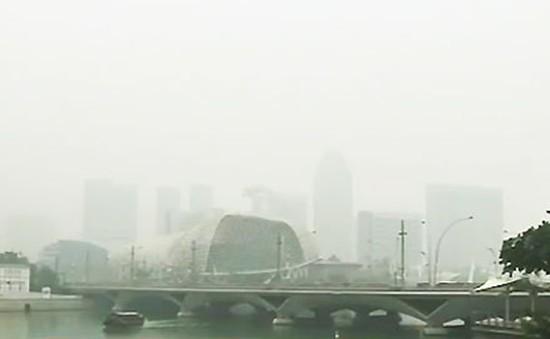 Singapore: Ngành du lịch bị ảnh hưởng nghiêm trọng vì khói bụi