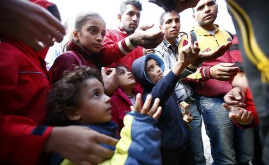 Đức tăng viện trợ cho các bang do khủng hoảng di cư