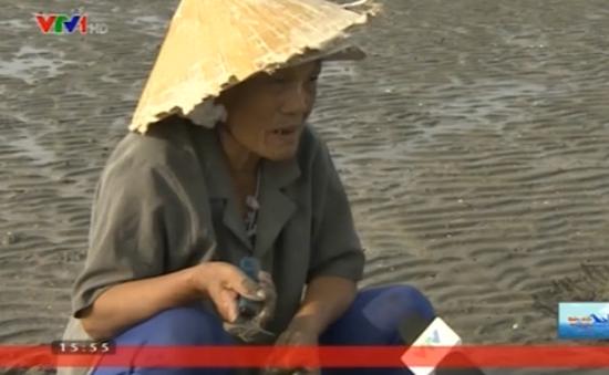 Nhọc nhằn nghề cào ngao biển tại huyện Quỳnh Lưu
