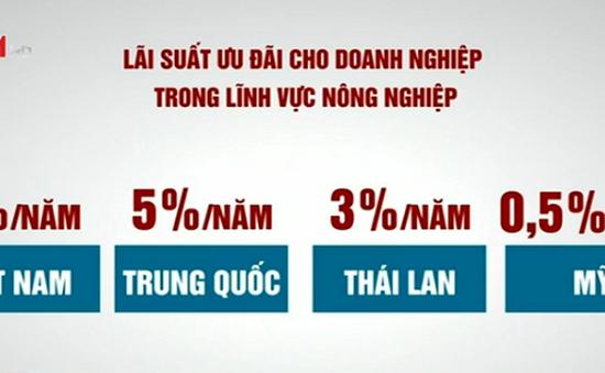 Chăn nuôi Việt Nam khó cạnh tranh vì lãi suất cao