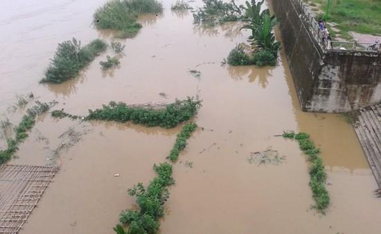 Lũ thượng nguồn sông Hồng dâng cao đột ngột tại Lào Cai