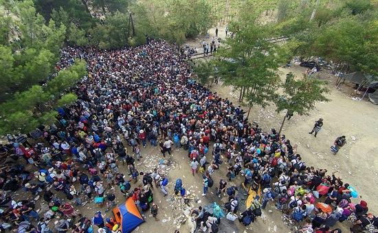 Áo đề xuất kế hoạch 5 điểm xử lý khủng hoảng di cư
