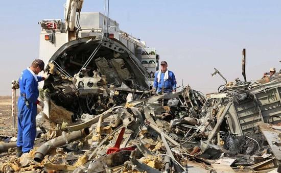 Nghi có bom trong khoang hành lý của máy bay Nga bị rơi