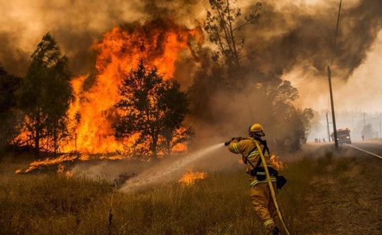 Cháy rừng dữ dội tại bang California, hàng trăm người phải sơ tán