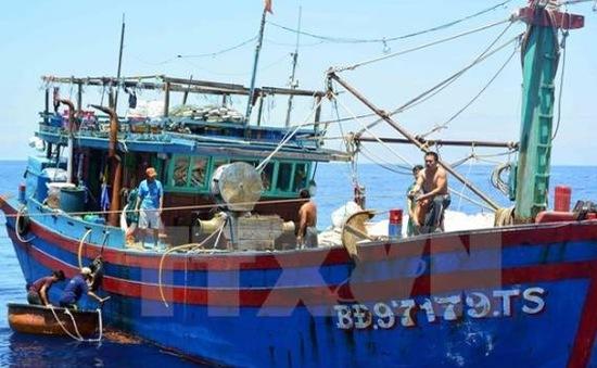 Bến Tre: Một ngư dân thiệt mạng vì khí độc hầm tàu cá