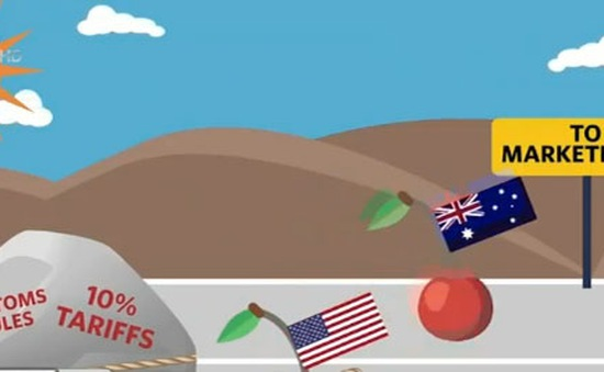 TPP sẽ đưa quả cherry lên trên cùng trong cửa hàng hoa quả tươi ở VN