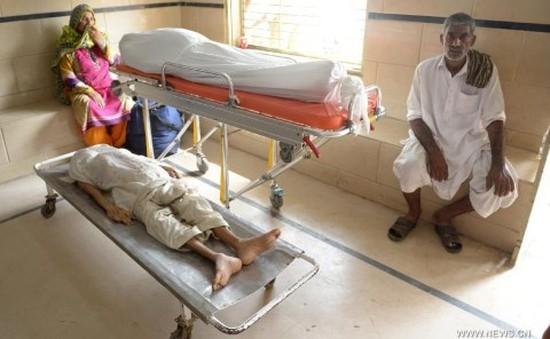 Pakistan: Gần 600 người thiệt mạng do nắng nóng