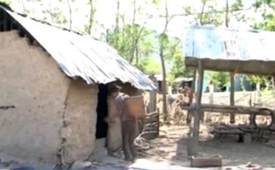 Ninh Thuận: Nắng hạn nghiêm trọng nhất trong thập kỷ