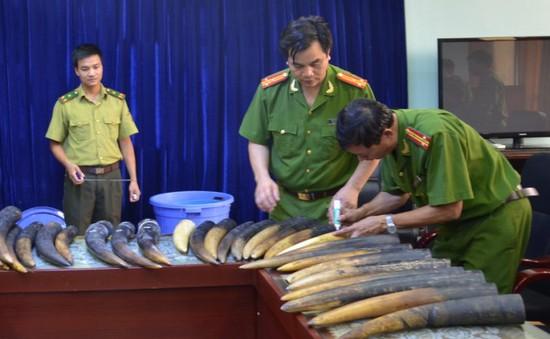 Lào Cai: Bắt giữ 106kg sừng động vật