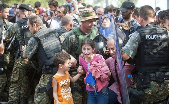 EC họp khẩn về khủng hoảng di cư tại Tây Balkan