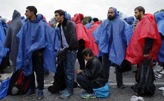 EU và 3 nước Balkan họp khẩn về vấn đề người di cư