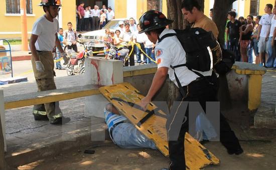 RSF: 110 nhà báo bị giết hại trong năm 2015