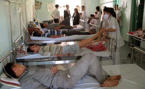 Lâm Đồng: 51 người nhập viện sau khi ăn bánh mỳ từ xe đẩy rong