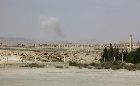 IS sát hại 400 người tại thành phố cổ Palmyra của Syria