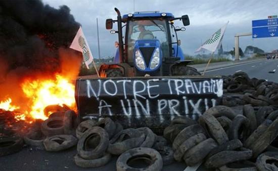 """Nông dân Pháp biểu tình vì nông sản """"bị phá giá"""""""