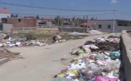 Nghệ An: Rác thải ngập đường đê chắn sóng