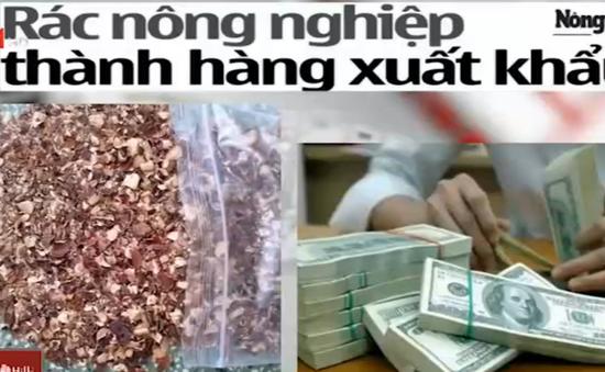 Điểm báo sáng 27/11: Đổi vỏ hạt điều, bã vỏ hạt điều lấy hàng triệu USD