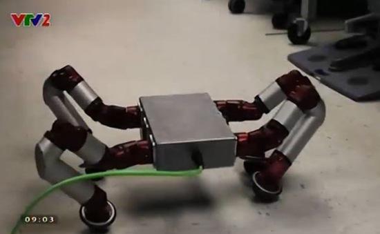Sử dụng robot rắn trong cứu hộ khẩn cấp