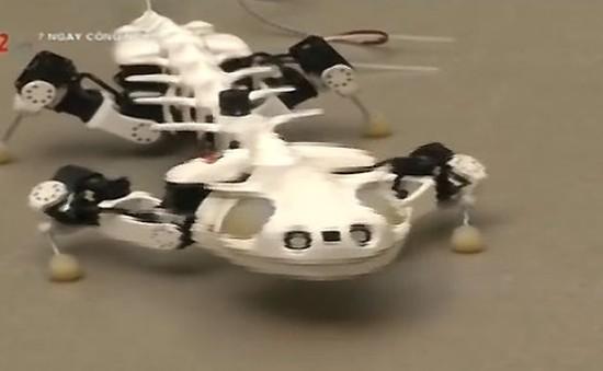 Pleurobot - Robot mô phỏng loài kỳ nhông