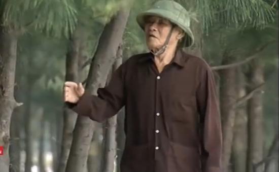 Cựu chiến binh hơn 30 năm tình nguyện trồng cây chắn sóng
