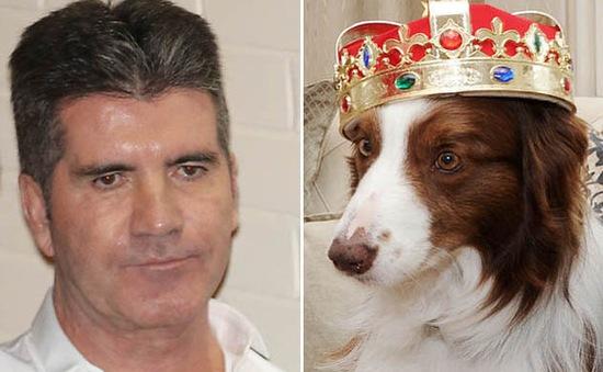 Simon Cowell: Quán quân Britain's Got Talent không có ý lừa khán giả