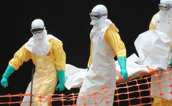 Liên Hợp Quốc: Dịch bệnh Ebola đã trong tầm kiểm soát