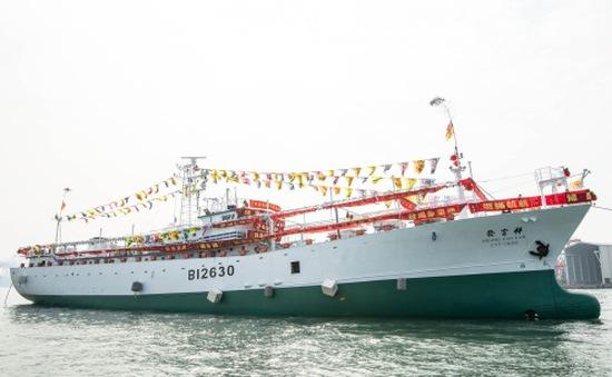 Chưa tìm thấy 3 thuyền viên mất tích ngoài khơi Nhật Bản