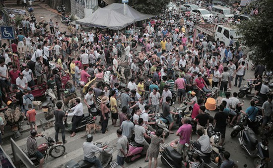Trung Quốc tranh cãi xung quanh lễ hội thịt chó