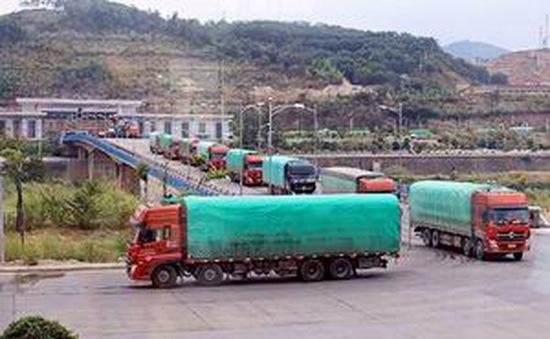 Kéo dài thời gian thông quan hàng thủy sản qua cửa khẩu Kim Thành