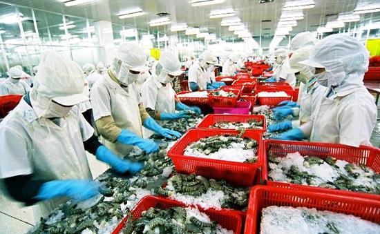 Báo động kiểm soát tồn dư hóa chất kháng sinh nuôi trồng thủy sản