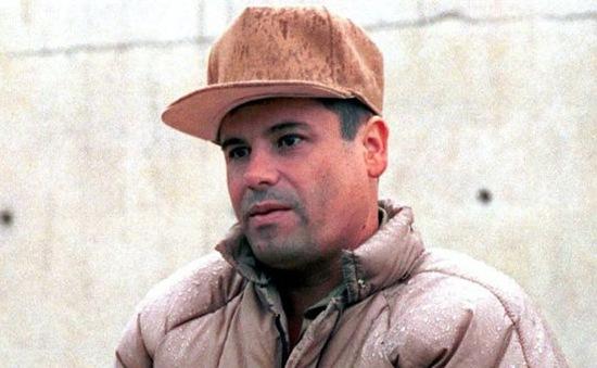 Nhiều quan chức Mexico ra hầu tòa do vụ trùm ma túy vượt ngục
