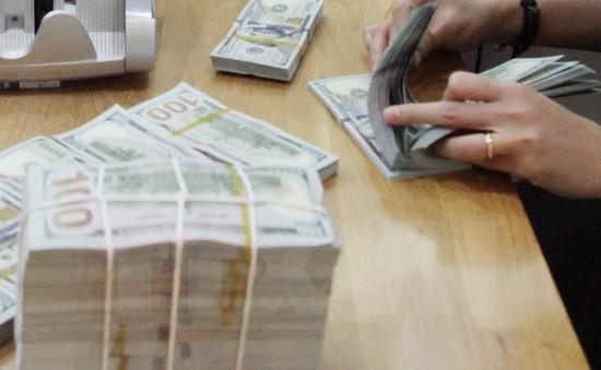 Tập đoàn khó khăn tài chính không được cấp bảo lãnh Chính phủ