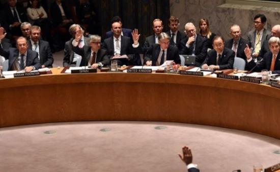 Liên Hợp Quốc thông qua nghị quyết về lộ trình hòa bình ở Syria