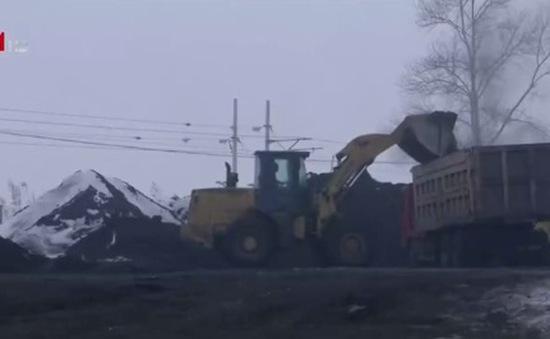 Nhu cầu than của thế giới ngày càng chững lại