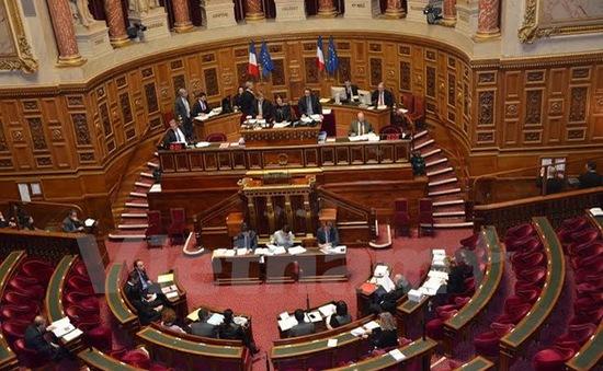 Nghị viện châu Âu chính thức thông qua PCA với Việt Nam