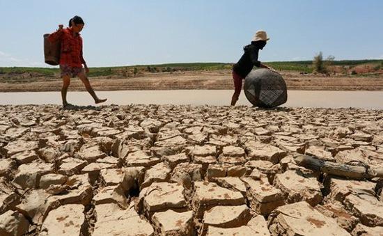 TP.HCM lên phương án ứng phó khô hạn nghiêm trọng