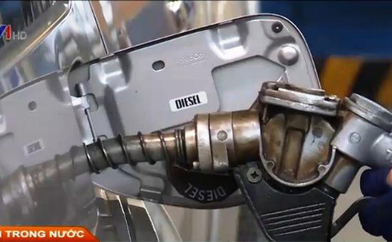 TPHCM: Xe công sẽ phải sử dụng xăng E5?