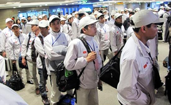 Xử phạt DN đưa người đi xuất khẩu lao động trái quy định