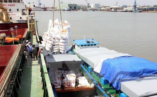 Triển khai đề án xây dựng thương hiệu gạo