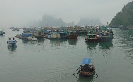 Quảng Bình: Bộ đội biên phòng cứu nạn thuyền viên bị thương nặng