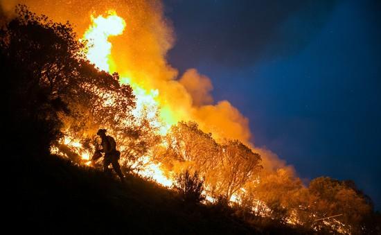 Mỹ: Cháy rừng lan rộng, 2 người thiệt mạng