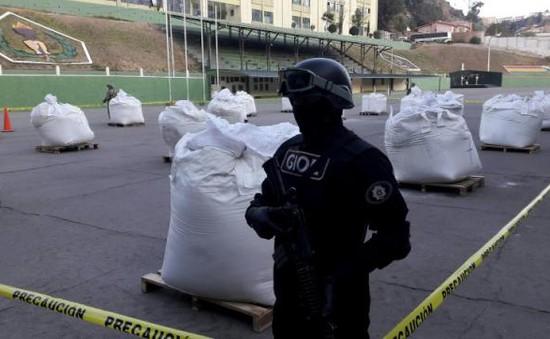 Bolivia thu giữ hơn 7 tấn cocaine được vận chuyển đến Mỹ