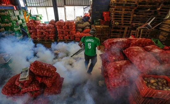 Ba trường hợp nhiễm virus Zika tại Việt Nam mang tính đơn lẻ