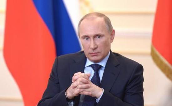 """Nga để ngỏ khả năng khôi phục dự án """"Dòng chảy phương Nam"""""""