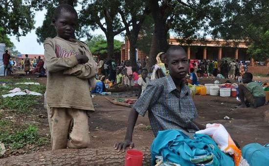 Tổng Thư ký LHQ hối thúc HĐBA cấm vận vũ khí đối với Nam Sudan