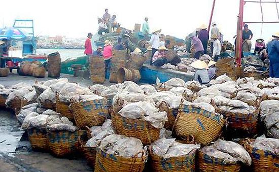 Xử phạt 5 cơ sở hải sản gây ô nhiễm tại cảng cá Sa Huỳnh (Quảng Ngãi)