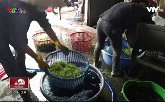 Đồng Nai: Bắt quả tang cơ sở sử dụng hóa chất ngâm rau muống bào