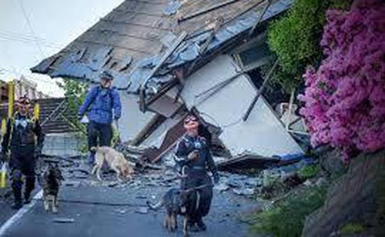 Động đất 5,3 độ richter tại miền Bắc Nhật Bản