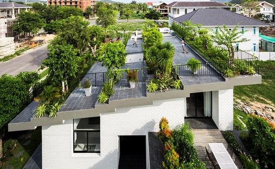 Độc đáo ngôi nhà ở Nha Trang biến mái ngói thành... công viên
